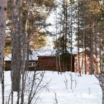 backside of the wilderness lodge husky tours