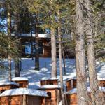 Husky Tours dogsledding kiruna sled dog tours wilderness lodge