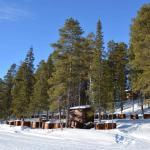 wilderness lodge from the lake, sled dog trips, dogsledding kiruna