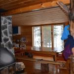 wilderness lodge husky ride, alaskan husky trips, sled dog tours