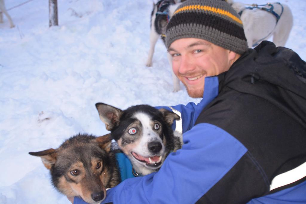 Husky tours sled dog trips, dog sledding Kiruna, winter activities lapland, sled dog tours, dog sled trips