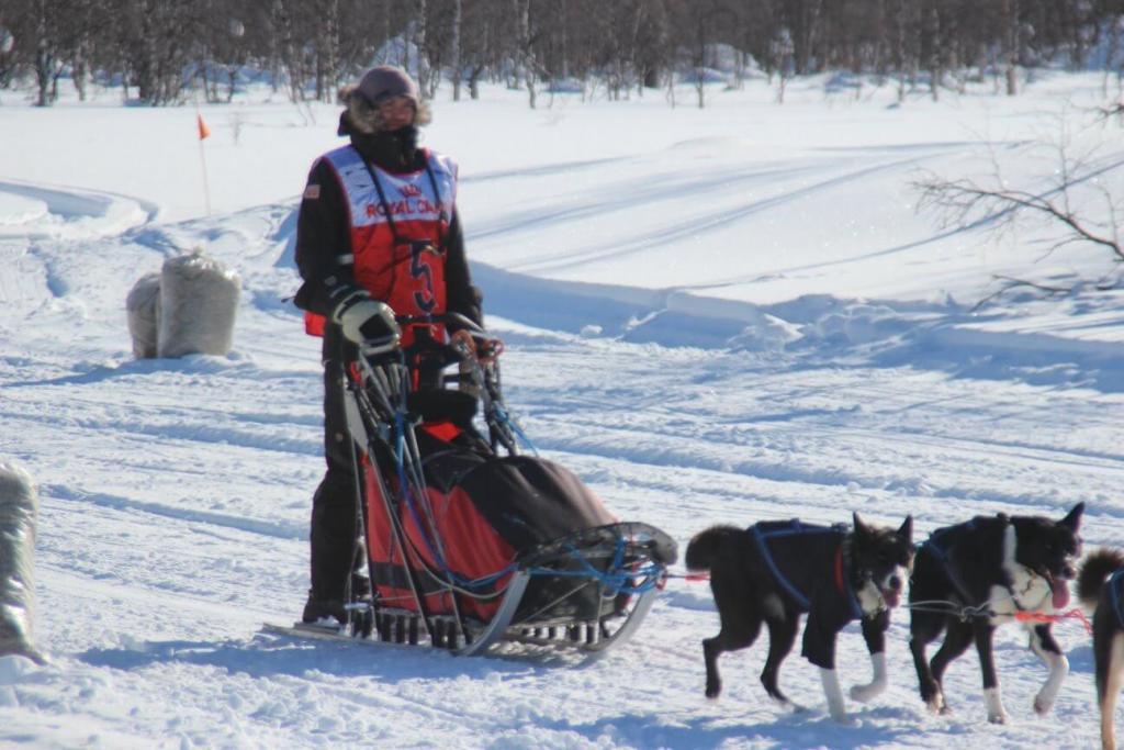 racing husky tours