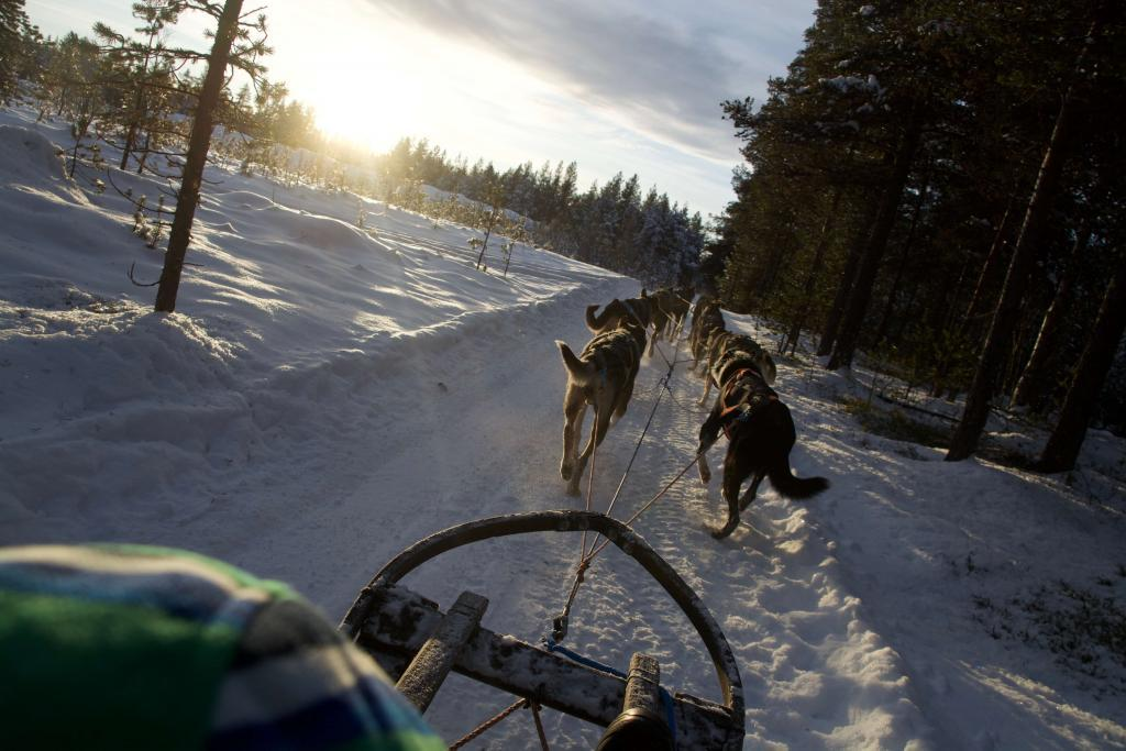 husky trails