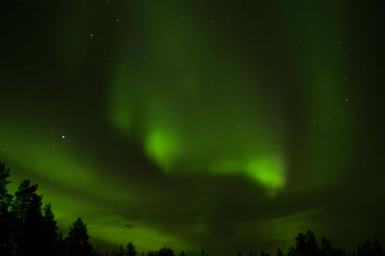 husky tours aurora